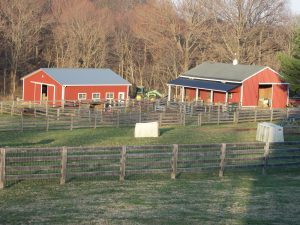 The two red barns
